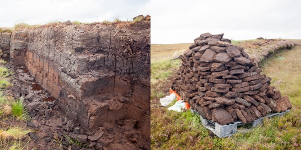 People still harvest peat in really rural areas to heat their homes.  (This was on the isle of Lewis)  The commercial distilleries still do it the same way.